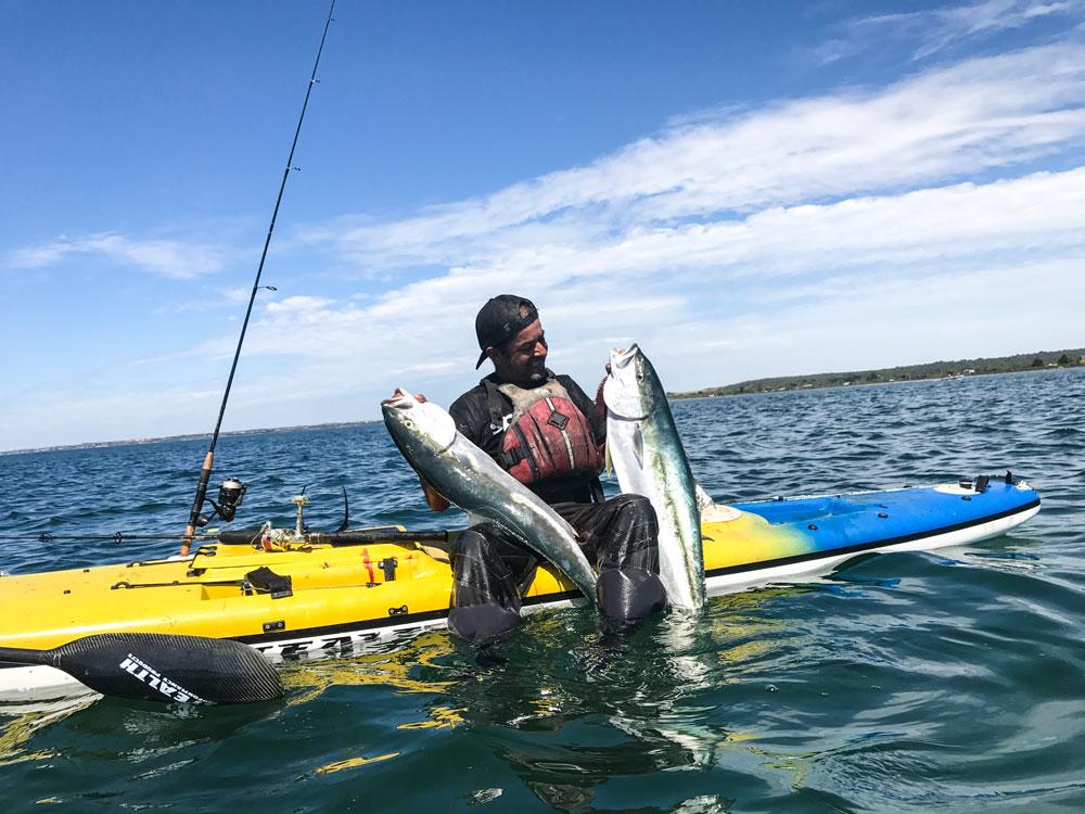 Rob Maya the King of Kingfish